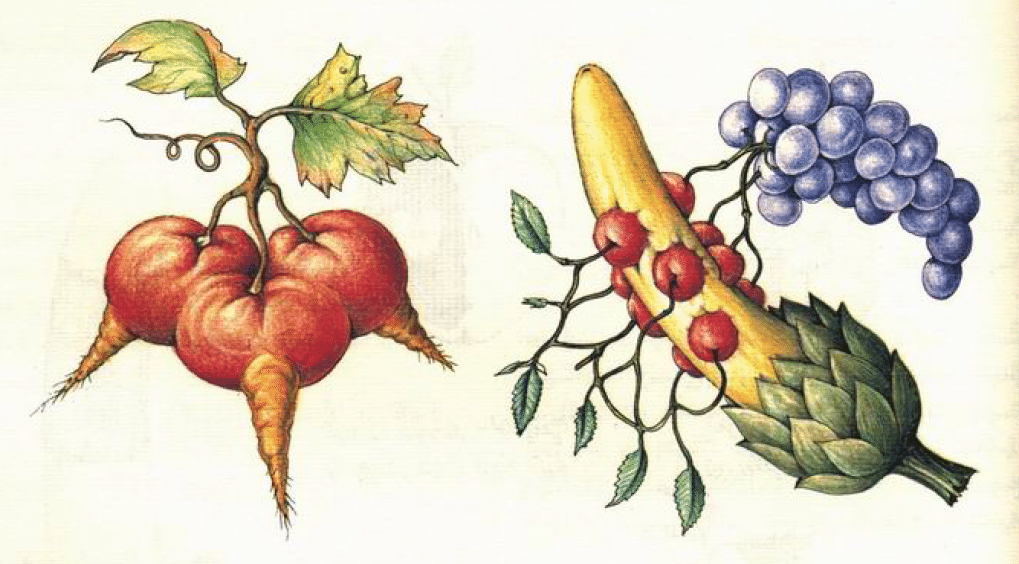 Original Codex Seraphinianus image.