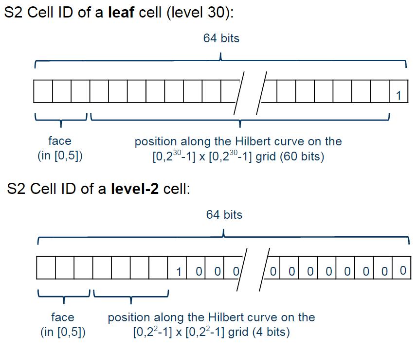 Cell Representation Schema